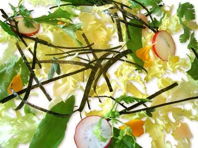 Salade d'algues, herbes aromatiques et racines (2004)