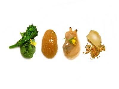 Feuilles tendres de navet, amarante, palourdes et citron (2004)