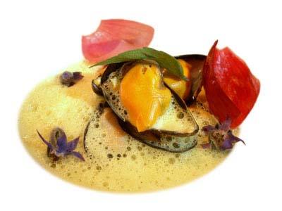 Cozze con cipolle rosse ed emulsione di zafferano (2004)
