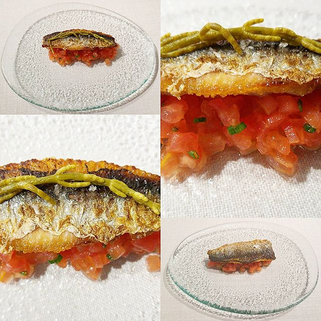 Sardina del Cantábrico, tomate rosado y reducción de hidromiel