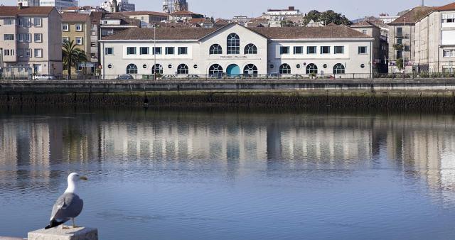 Vista Panorámica del Mercado de Pontevedra