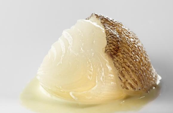 Cebolla Blanca con  Fondo de Bacalao y Pimiento Verde