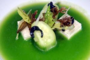 Celery and fennel panacota with cucumber and seaweed juice