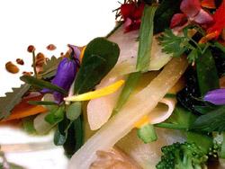 Gargouillou de verduras